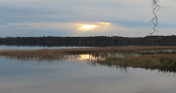 Ocean Pond Cpgr , Osceola NF, FL (4)