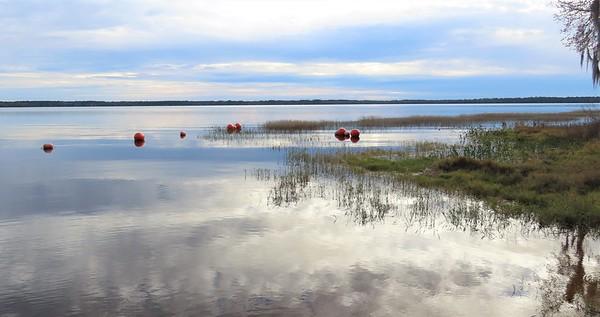 Ocean Pond Cpgr , Osceola NF, FL (3)
