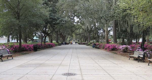 Savannah, GA (12)