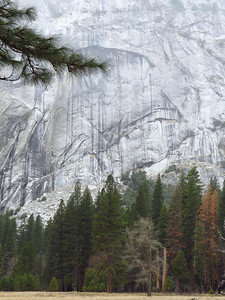 Yosemite National Park, California (Feb  9) (13)