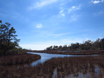 Gulf Islands National Seashore, Ocean Springs, MS (7)