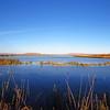 Tule Lake NWR (42)