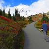 Paradise Jackson Visitor Center (Mt  Rainier NP, WA (20)