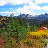 Paradise Jackson Visitor Center (Mt  Rainier NP, WA (25)