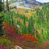 Paradise Jackson Visitor Center (Mt  Rainier NP, WA (19)