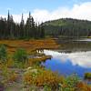 Reflection Lakes (Mt  Rainier NP, WA) (4)