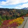 Paradise Jackson Visitor Center (Mt  Rainier NP, WA (21)