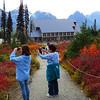 Paradise Jackson Visitor Center (Mt  Rainier NP, WA (13)