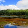 Reflection Lakes (Mt  Rainier NP, WA) (2)