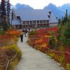 Paradise Jackson Visitor Center (Mt  Rainier NP, WA (12)