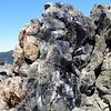 Obsidian Flow Trail (24)