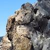 Obsidian Flow Trail (25)