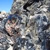 Obsidian Flow Trail (32)
