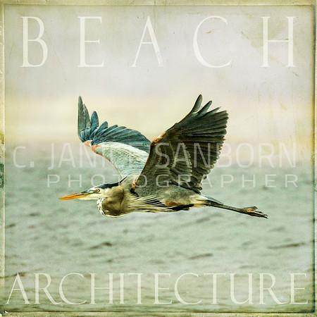 Beach Architecture3