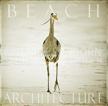 Beach Architecture2