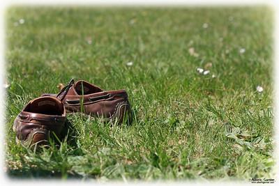 Bateau dans l'herbe