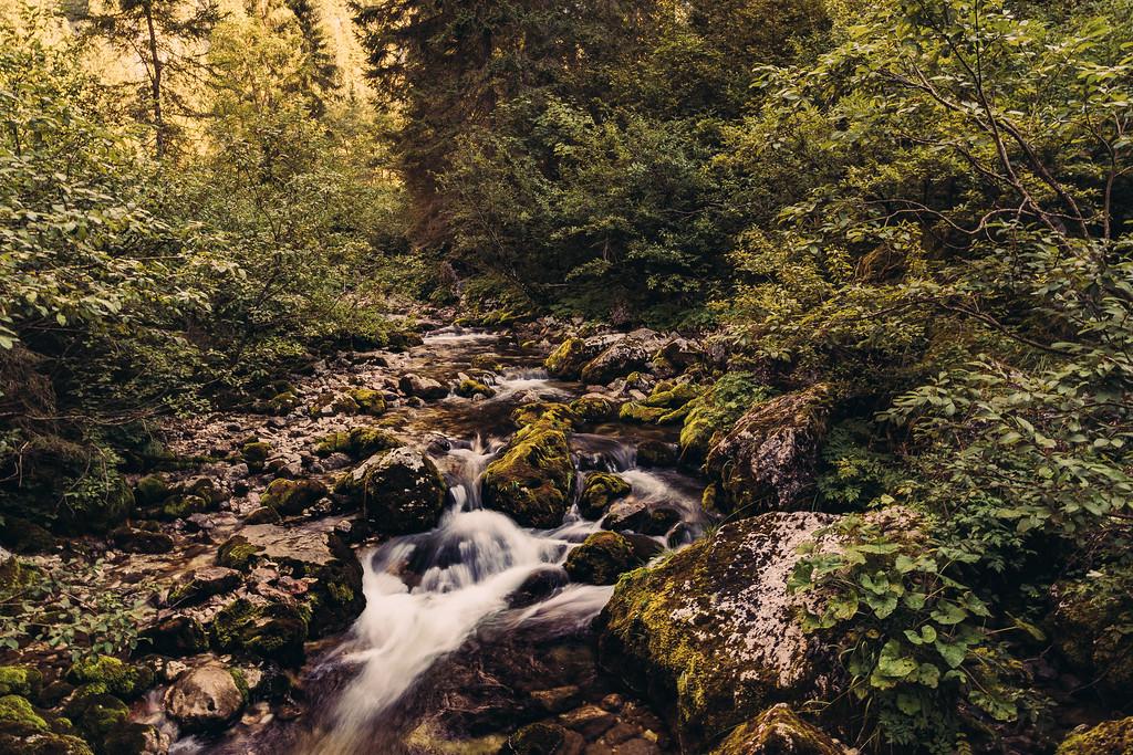 Rural Stream in Austria