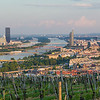 Part of the Vienna Skyline from kahlenberg
