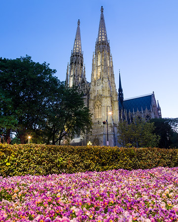 Votive Church and Spring Flowers in Vienna