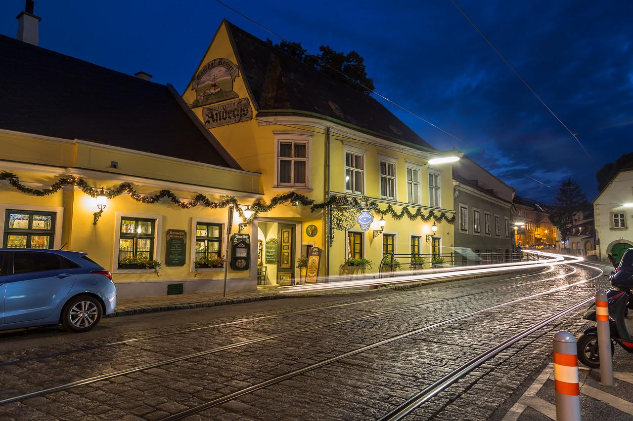 Austrian Restaurant in Vienna
