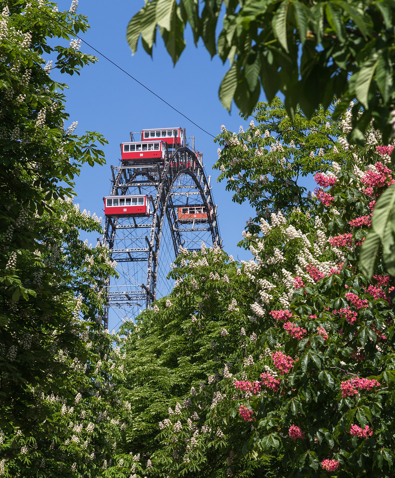 Riesenrad in the Spring