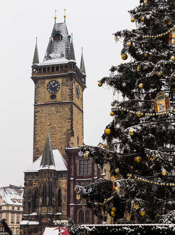 Old Town Square Clock Tower and the Christmas Tree