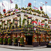 Pub covered in Flowers in London