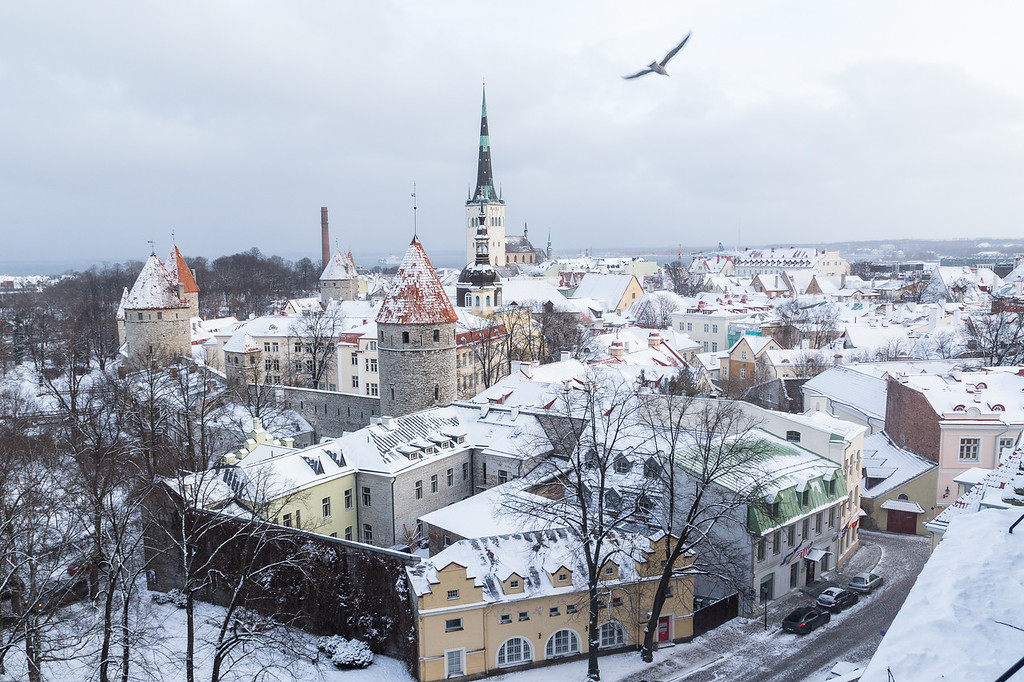 Tallinn skyline in the winter