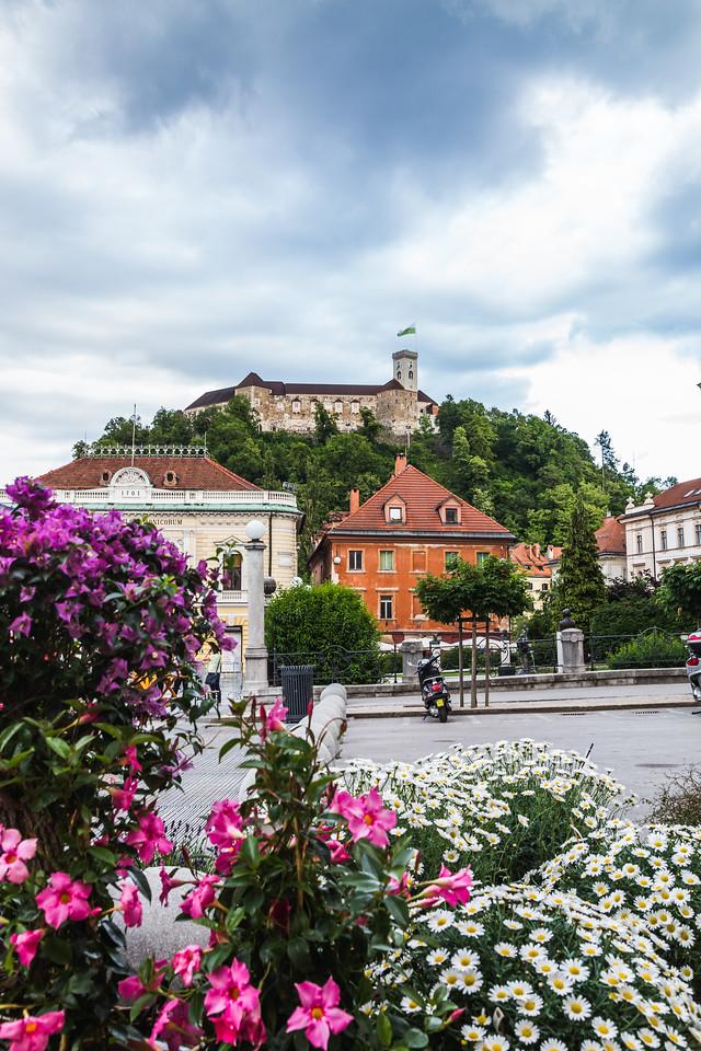 Ljubljana Castle in the Summer