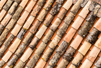 Roof Tiles 1