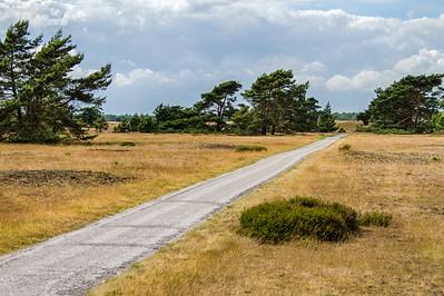 De Hoge Veluwe National Park, NL