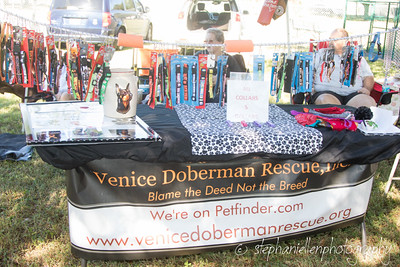 _MG_3314Woofstock_2016_Stephaniellen_Photography
