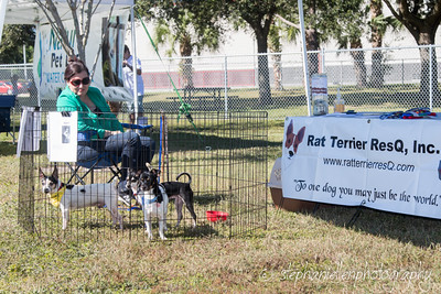 _MG_3318Woofstock_2016_Stephaniellen_Photography