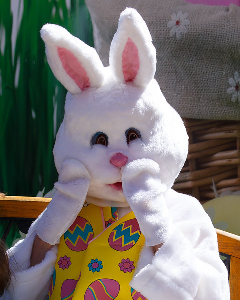 Easter Egg Hunt-407