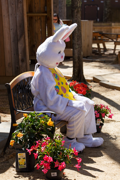 Easter Egg Hunt-401