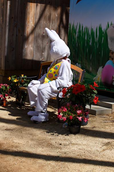Easter Egg Hunt-402