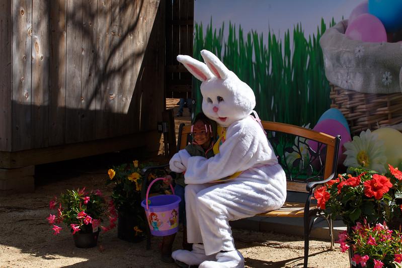 Easter Egg Hunt-241