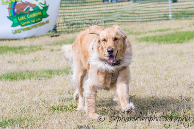 Woofstock_carrollwood_tampa_2018_stephaniellen_photography_MG_8383