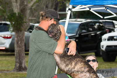Woofstock_carrollwood_tampa_2018_stephaniellen_photography_MG_8337