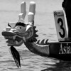 2009 Dragon Boats  029