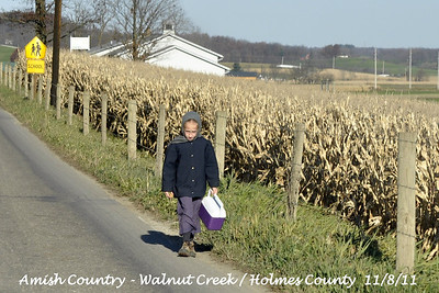 Amish Country / Walnut Creek - Holmes County