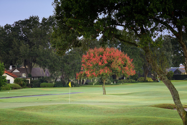 Morning at Bay Hill
