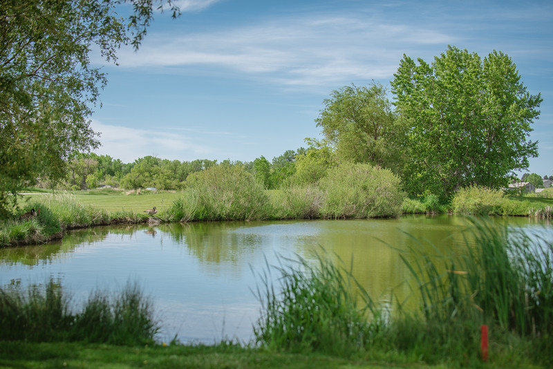 Daltons Moon Golf Tourney 2019-4521
