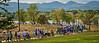 Denver NF Walk 2013-8068-2