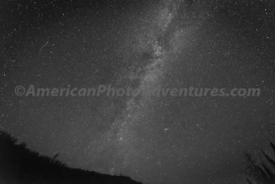 Teton Forest_20170818_0030
