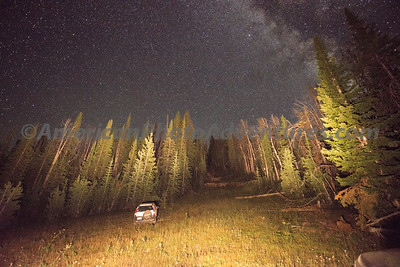 Teton Forest_20170818_0039