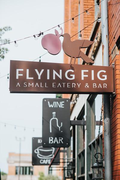 Flying Fig-0001