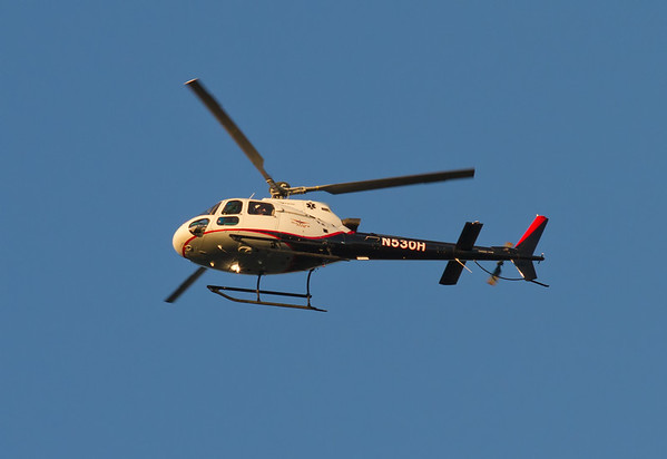 2008 AMERICAN EUROCOPTER LLC AS350B3 - N530H