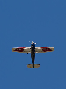 N9455X Cessna 182R Skylane - Civil Air Patrol