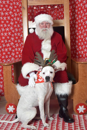 HSSC Photos With Santa 2016